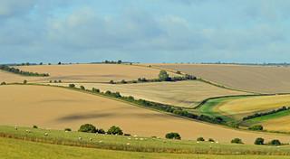 A fine morning, East Garston, Berkshire, England