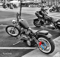 Aug 2 2017 - Cool pant leg grabber in Sturgis (La_Z_Photog) Tags: 080217sturgis lazy photog elliott photography sturgis south dakota black hills motorcycle classic rally races glencoe campground bikini bike wash dungeon bar