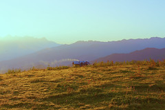 summer (sopo_chinchaladze) Tags: summer sun sunyday sunny light lights sunlight sunrise hike travel hut hiking view canon 700d canon700d fresh ngc
