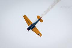 Atlantic City Airshow 2017 (rxsamg) Tags: airshow atlanticcity beasley snjtexan jimbeasley texan snj