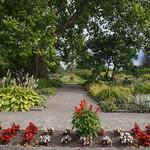 Ornamental Gardens in the CEF thumbnail