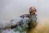 sacrifice (sami kuosmanen) Tags: suomi summer dof dark dead death skull kuusankoski kouvola kesä kallo kuollut kuolema savu smoke fog colorful creative clouds cloud closeup colors valo värikäs luonto light metsä maisema europe expression art finland forest scary scandinavia horror eerie kauhu hounted rock rock´n´roll heavy