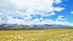 170824 Damxung 29 (Brilliant Bry *) Tags: lhasa damxung namco namtso tibet china2017