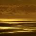 Golden Ocean View