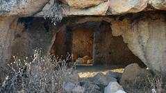 Like in the old days (noam_adir) Tags: atlit israel antiquities stones light