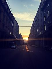 Artkn- Sun beams illuminate the street, Bologna, Italy 🇮🇹