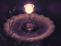 Candle in the Night (clarkcg photography) Tags: candle flame fire wick candlestand birdbath concrete evergreen night dark inthecandlelight flickrfriday