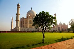 The Taj Mahal on a sunny day (Heaven`s Gate (John)) Tags: tajmahal taj mahal india agra art architecture sunny day blue sky tree icon johndalkin heavensgatejohn white marble mausoleum grass 25faves 50faves topf 25 topf50 sunrise dawn 100faves
