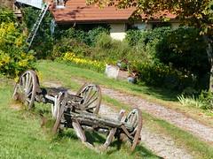 Rund um Berchigrange - Vosges/Lorraine (thobern1) Tags: berchigrange grangesurvologne vosges vogesen lorraine lothringen grandest france