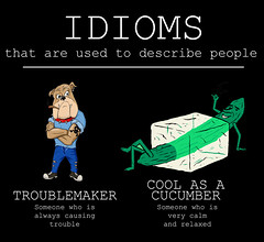 Idioms to describe people