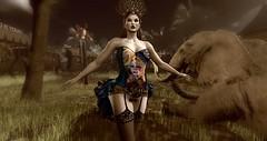 Circus (Honey Bender1) Tags: azoury maitreya lelutka fasterpussycat bender mesh circus fashioncircus style couture secondlife originalmesh honeybender