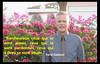 Farid Gabteni_citation 147 (SCDOFG) Tags: faridgabteni lesoleilselèveàloccident messageorigineldelislam islam dieu coran citation spiritualité religion quran scdofg wwwscdofgcom