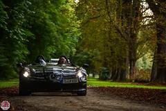 Mercedes McLaren Stirling Moss (GPE-AUTO) Tags: chantilly artsetelegance art elégance castle nature france autoshow motorshow classic concours contest tree friends mercedes mclaren slr stirling moss mercedesslr mercedesstirlingmoss slrstirlingmoss roadster front trees forest wild