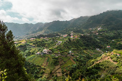 On The Terraces (NVOXVII) Tags: landscape terraces agriculture green vista view picturesque nikon madeira raferta levadawalk stunning travel mountainous