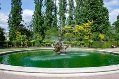 54168-London (xiquinhosilva) Tags: 2017 camden england greatbritain london queenmarysrosegardens regentspark royalparksoflondon uk unitedkingdom gb