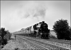 5305 lifts The South Yorkshireman up Saunderton Bank. (johncheckley) Tags: uksteam black5 passengertrain