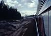 Amtrak Transcontinental Steam Excursion behind SP #4449.  Approaching Chemult Oregon, April 30 1977. (Dan Haneckow) Tags: 1977 sp4449 chemult