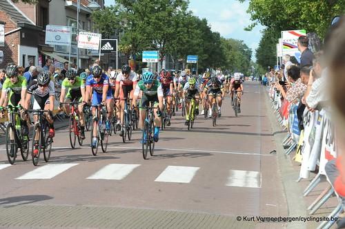 Omloop Vlaamse gewesten (483)