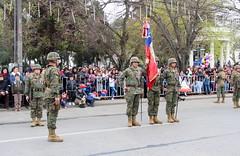 Linares - Chile (Pablo C.M || BANCOIMAGENES.CL) Tags: linares chile regióndelmaule ejércitodechile fiestaspatrias escueladeartillería