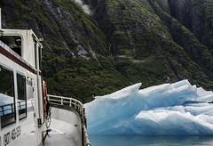 Juneau_Alaska_tracy_17