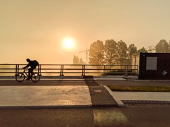 cyclist burgum bridge sunrise mist prinsesmargrietkanaal (Photo: Dimitri W on Flickr)