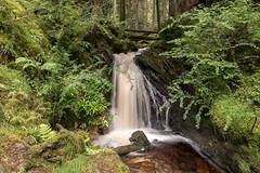Gorge Waterfall (Click And Pray) Tags: managedbyclickandpraysflickrmanagr pucksglen waterfall stream river horizontal scotland landscape argyll tress longexposure pucksglenwaterfallstreamriverhorizontalscotlandlandscapeargylltresslongexposuregbr