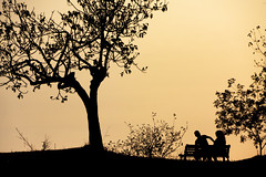 silhouette (duegnazio) Tags: albero panchina silouette contorni sagoma controluce 2017 duegnazio 40d canon italia italy lazio roma rome