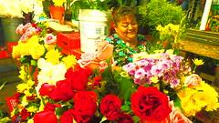 """Summer Waltz Op. 64 No. 2"" (MGarteMG) Tags: colorful flowers people fullcolor market mercado san benito mercadosanbenito merida red yellow mexico flora flower portrait garden orange naturaleza retrato colores flor evolution colours"