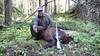 Idaho Big Game Hunting and Fishing 12