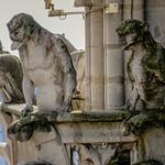 Notre Dame-9946 thumbnail