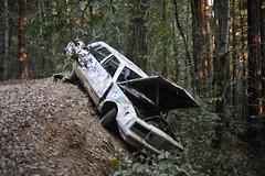 DSC_3314 (Darrell Nielsen) Tags: lost coast overland overlanding toyota tacoma four wheel pop up campers usal petrolia honeydew humbolt northcoast lostcoast camping adventure