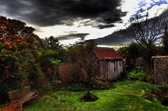 My GARDEN SEAT needs some ATTENTION.... (Lani Elliott) Tags: lanielliott garden homegarden shed flowers trees moody dramatic dramaticsky threateningsky cloud clouds sky skies light bright grass green mood drama historicshed oldshearingshed oldapplepickershut c1889 wow excellent beautiful awesome gorgeous fantastic