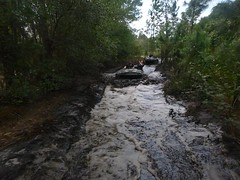 Photo (Revolution Off Road) Tags: things to do in orlando atv off road adventures mucky ducks trophy bass fishing large mouth vip corporate events weddings venue endurance races dealership exhibitions tourist experiences