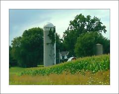 Summer Greens (novice09) Tags: farm hss slidersunday wisconsin silo countryside rural pencilsketchapp ipiccy textures