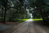 Road to the beach - Edisto Island, S.C. (DT's Photo Site - Anderson S.C.) Tags: canon 6d 24105mml lens edisto island south carolina country dirt roads low beach rural southern america live oak moss scenic landscape coastal southernlife