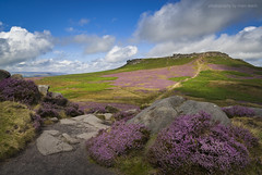 Higger Tor Heather (marc_leach) Tags: peakdistrict gritstone heather higgertor carlwark clouds summer landscape nikon