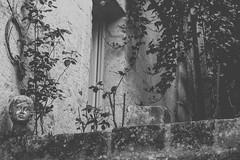 (Nunù Photography) Tags: matera italy house blackandwithe creepy wall