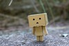 (ccandy357) Tags: danbo danboard containerdanboard fromjapan toys