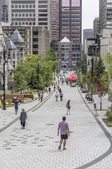 promenade fleuve-montagne by eva blue 13 (The Montreal Buzz) Tags: promenadefleuvemontagne mcgill mctavish montreal evablue