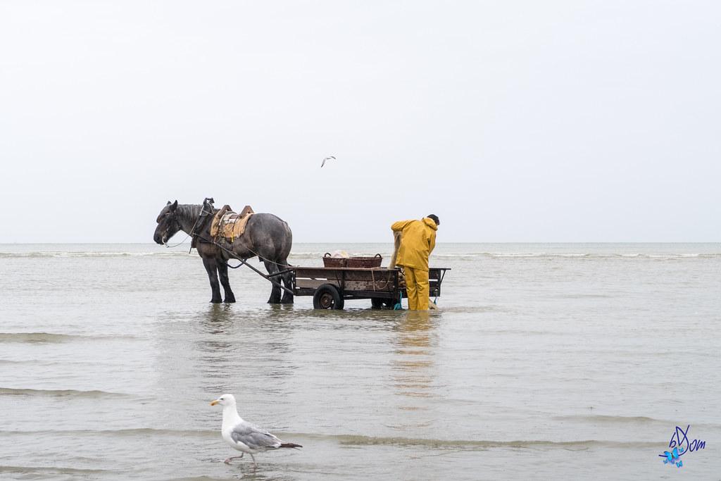 libertins a la plage liège