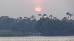Sunset on the Nile (Rckr88) Tags: maadi cairo egypt sunsetonthenile sunset nile africa travel travelling water waves wave river rivers nileriver thenileriver nilesunset nature outdoors sun sunlight tree trees