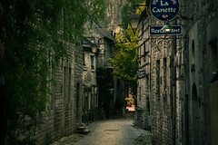 Durbuy II (bjdewagenaar) Tags: street city belgium durbuy streetphotography houses buildings urban sony sonya58 sonyalpha sonyphotographer minolta secrethandshake lightroom adobelightroom raw