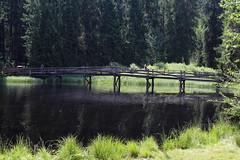 Moorsee Etang de la Gruère ( JU - 998 m - Länge 600 m - Tiefe 4.5 m - Stausee See lac lake lago Hochmoor Moor - Naturschutzgebiet ) auf dem Hochplateau der Freiberge - Franches - Montagnes bei Saignelégier im Kanton Jura der Schweiz (chrchr_75) Tags: christoph hurni schweiz suisse switzerland svizzera suissa swiss chrchr chrchr75 chrigu chriguhurni chriguhurnibluemailch august 2017 albumzzz201708august