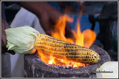 7069 - corn (chandrasekaran a 40 lakhs views Thanks to all) Tags: corn burning fire yercaud india tamilnadu canoneos760d tamronaf18270mmpzd