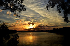 Sunset flare (Images by Jeff - from the sea) Tags: sunset clouds bluesky bundaberg burnettriver queensland dusk twilight goldensunset nikon goldenhour gumtree water brilliant intense vivid vibrant d7200 tamronsp2470mmf28divcusd australia august 2017 exquisitesunsets 1000v40f 100v60f topf75