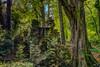 La fontaine du château - HDR (gilles_t75) Tags: d7200 france gillest hdr nikkor1024mmf3545 nikon bracketing exposurefusion highdynamicrange photohdr photomatix tonemapping cascade fontaine bois forêt sousbois arbre