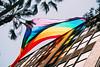 20150717-01790.jpg (tristanloper) Tags: sandiegopride sandiego california thewest thesouthwest sandiegoca sandiegocalifornia tristanloper creativecommons free