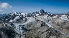 Wallis Panorama Deluxe
