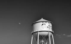Peach and Moon (Neal3K) Tags: georgia ir infraredcamera kolarivisionmodifiedcamera bw blackandwhite watertank watertower fortvalley ftvalley