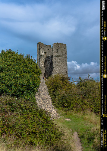 The Remains of Hadleigh Castle